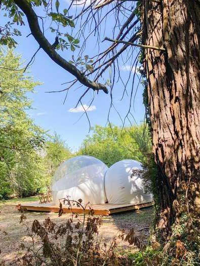 bulle-sequoia (13)